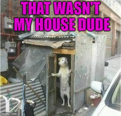 THAT WASN'T MY HOUSE DUDE | made w/ Imgflip meme maker