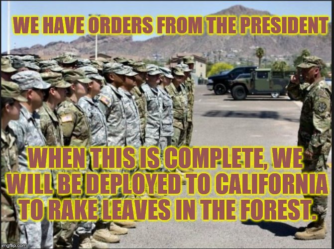 WHEN THIS IS COMPLETE, WE WILL BE DEPLOYED TO CALIFORNIA TO RAKE LEAVES IN THE FOREST. WE HAVE ORDERS FROM THE PRESIDENT | image tagged in forest fire,caravan,military humor,california fires,immigrants,trump immigration policy | made w/ Imgflip meme maker