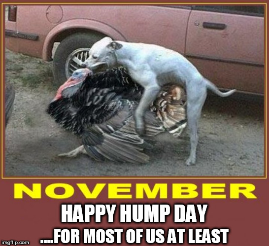 HAPPY HUMP DAY ....FOR MOST OF US AT LEAST | image tagged in thanksgiving,hump day,turkey,happy thanksgiving,dog,humpday | made w/ Imgflip meme maker