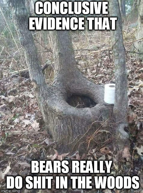 The question is settled... | CONCLUSIVE EVIDENCE THAT BEARS REALLY DO SHIT IN THE WOODS | image tagged in funny,bear,woods,toilet humor | made w/ Imgflip meme maker