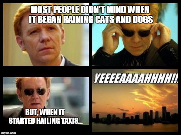 CSI | MOST PEOPLE DIDN'T MIND WHEN IT BEGAN RAINING CATS AND DOGS BUT, WHEN IT STARTED HAILING TAXIS... | image tagged in csi | made w/ Imgflip meme maker