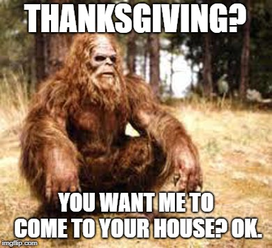 bigfoot | THANKSGIVING? YOU WANT ME TO COME TO YOUR HOUSE? OK. | image tagged in bigfoot | made w/ Imgflip meme maker