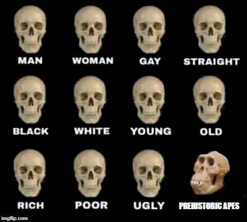 idiot skull | PREHISTORIC APES | image tagged in idiot skull | made w/ Imgflip meme maker