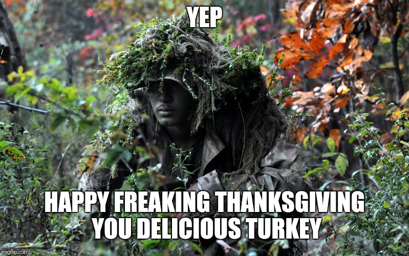 camouflage | YEP HAPPY FREAKING THANKSGIVING YOU DELICIOUS TURKEY | image tagged in camouflage | made w/ Imgflip meme maker