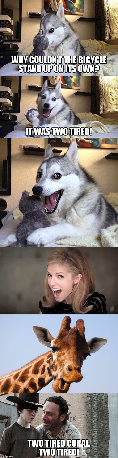 When you tell a bad joke, but your homies back you up | . | image tagged in memes,bad pun dog,bad pun anna kendrick,giraffe,the walking dead coral | made w/ Imgflip meme maker
