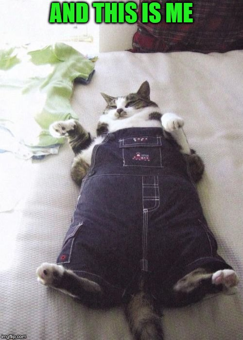 Fat Cat Meme | AND THIS IS ME | image tagged in memes,fat cat | made w/ Imgflip meme maker
