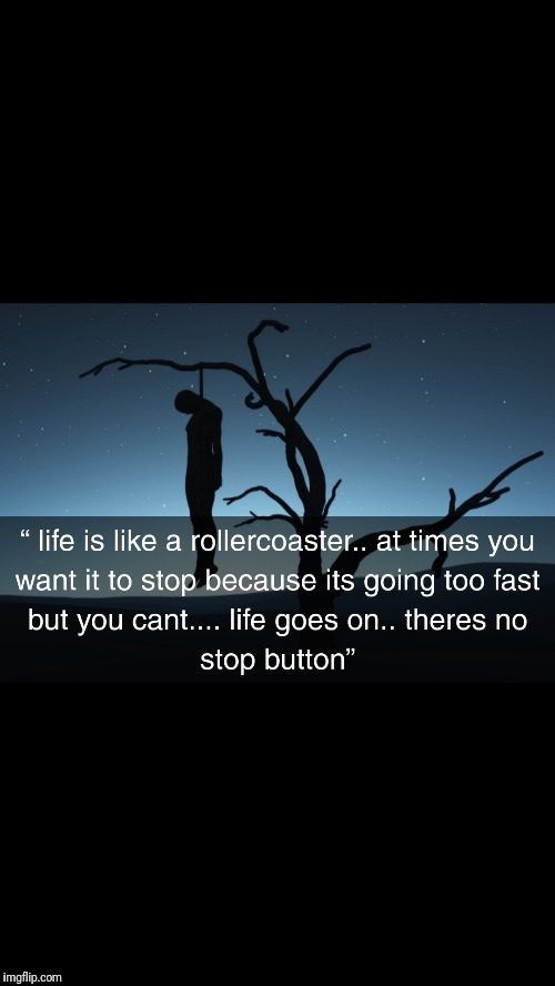 Life rollercoaster quote  | image tagged in shamqud,rollercoaster,life,life rollercoaster quote | made w/ Imgflip meme maker