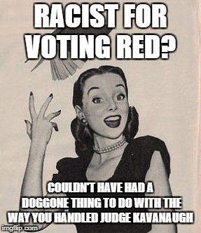 Throwing book vintage woman | RACIST FOR VOTING RED? COULDN'T HAVE HAD A DOGGONE THING TO DO WITH THE WAY YOU HANDLED JUDGE KAVANAUGH | image tagged in throwing book vintage woman | made w/ Imgflip meme maker