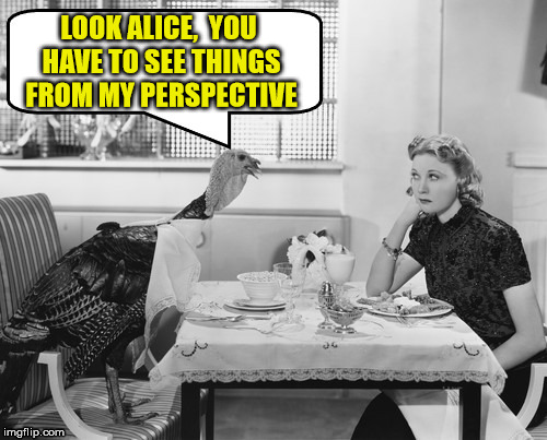 Thanksgiving Turkey Negotiations | LOOK ALICE,  YOU HAVE TO SEE THINGS FROM MY PERSPECTIVE | image tagged in thanksgiving turkey negotiations,memes,happy thanksgiving,deal with it | made w/ Imgflip meme maker