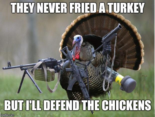 turkey | THEY NEVER FRIED A TURKEY BUT I'LL DEFEND THE CHICKENS | image tagged in turkey | made w/ Imgflip meme maker