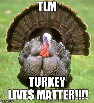 Since its Thanksgiving, i thought i should make this meme. | TLM TURKEY LIVES MATTER!!!! | image tagged in memes,turkey,tlm | made w/ Imgflip meme maker