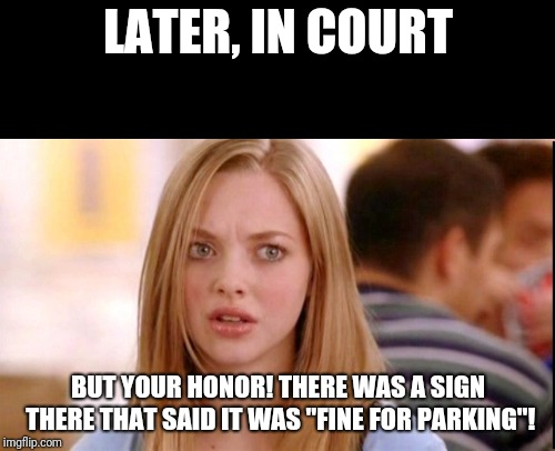 "LATER, IN COURT BUT YOUR HONOR! THERE WAS A SIGN THERE THAT SAID IT WAS ""FINE FOR PARKING""! 