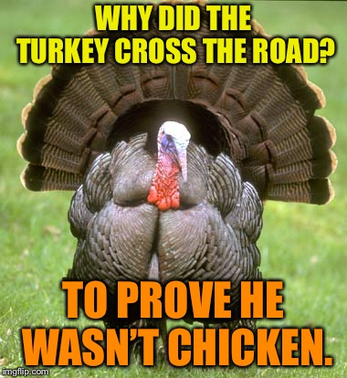 Turkey | WHY DID THE TURKEY CROSS THE ROAD? TO PROVE HE WASN'T CHICKEN. | image tagged in memes,turkey | made w/ Imgflip meme maker