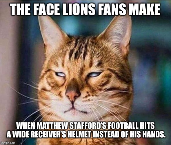 Catch the dang ball Lions | THE FACE LIONS FANS MAKE WHEN MATTHEW STAFFORD'S FOOTBALL HITS A WIDE RECEIVER'S HELMET INSTEAD OF HIS HANDS. | image tagged in that face you make eyeroll cat,memes,nfl football,quarterback,pass,hands | made w/ Imgflip meme maker