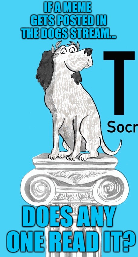Socrates' Dog | IF A MEME GETS POSTED IN THE DOGS STREAM... DOES ANY ONE READ IT? | image tagged in memes,socrates dog | made w/ Imgflip meme maker