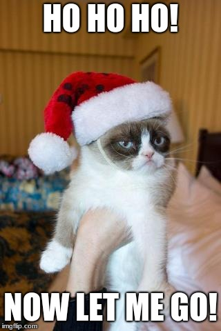 Grumpy Cat Christmas | HO HO HO! NOW LET ME GO! | image tagged in memes,grumpy cat christmas,grumpy cat | made w/ Imgflip meme maker