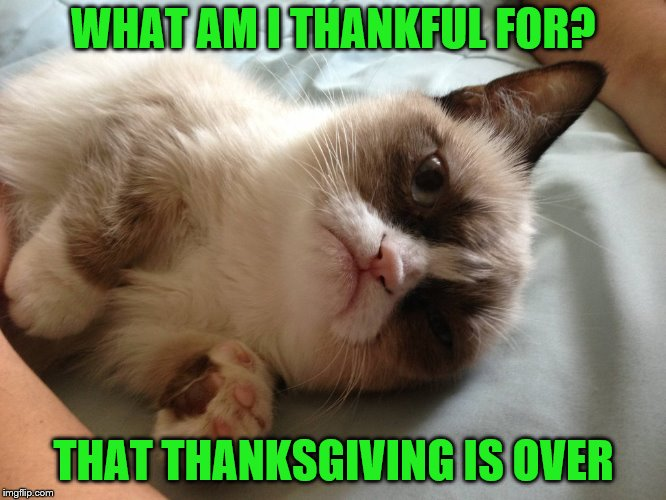 Finally | WHAT AM I THANKFUL FOR? THAT THANKSGIVING IS OVER | image tagged in memes,grumpy cat,thanksgiving,thankful | made w/ Imgflip meme maker