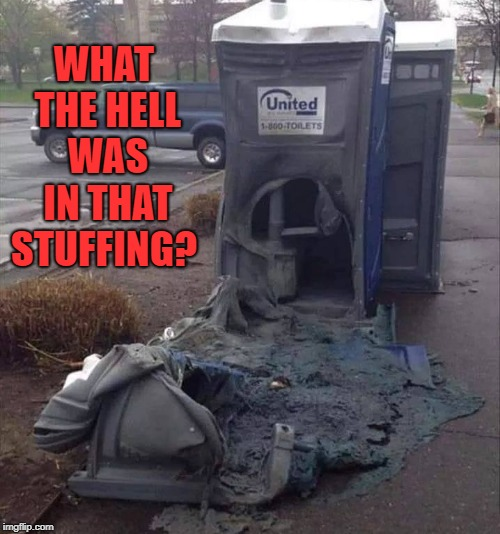 crap friday | WHAT THE HELL WAS IN THAT STUFFING? | image tagged in outhouse,burned | made w/ Imgflip meme maker