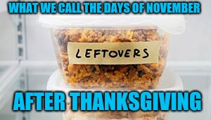 It's not Christmas yet... | WHAT WE CALL THE DAYS OF NOVEMBER AFTER THANKSGIVING | image tagged in leftovers | made w/ Imgflip meme maker
