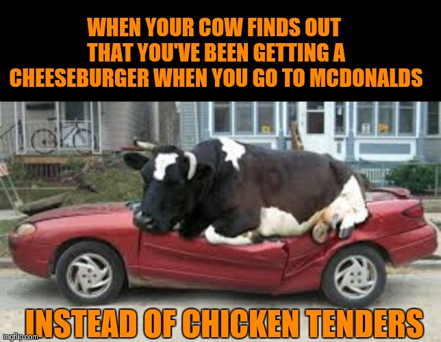 Better Hide Yo Kids And Hide Yo Wife | WHEN YOUR COW FINDS OUT THAT YOU'VE BEEN GETTING A CHEESEBURGER WHEN YOU GO TO MCDONALDS INSTEAD OF CHICKEN TENDERS | image tagged in memes,funny,mad cow,mcdonalds,cheeseburger,hide yo kids hide yo wife | made w/ Imgflip meme maker