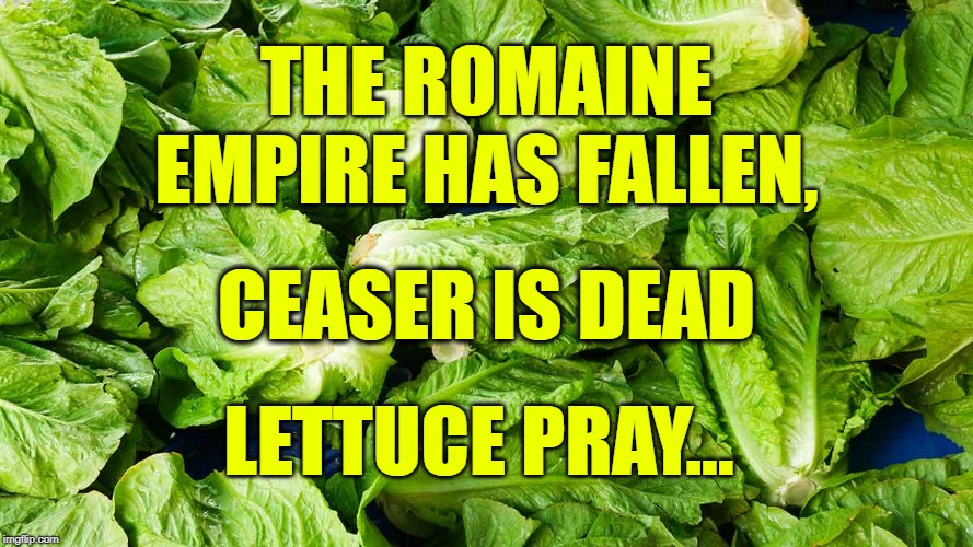 THE ROMAINE EMPIRE HAS FALLEN, LETTUCE PRAY... CEASER IS DEAD | image tagged in romaine,lettuce | made w/ Imgflip meme maker