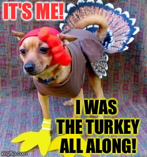 IT'S ME! I WAS THE TURKEY ALL ALONG! | made w/ Imgflip meme maker