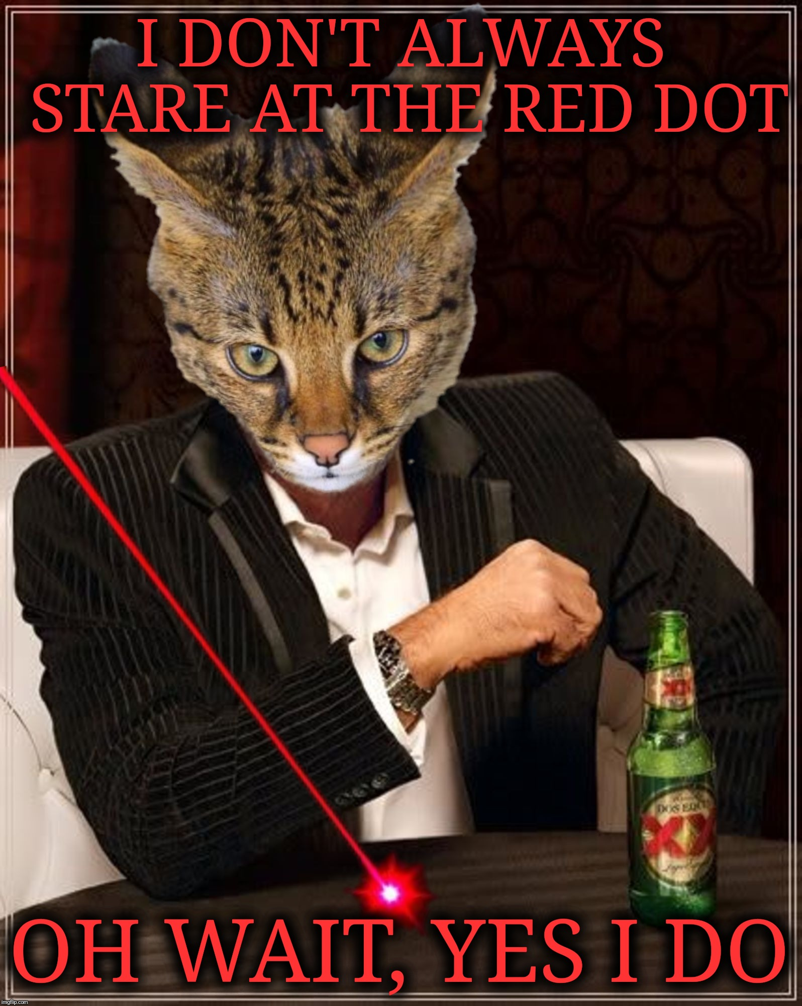 Keep your eye on the prize | I DON'T ALWAYS STARE AT THE RED DOT OH WAIT, YES I DO | image tagged in the most interesting man in the world,the most interesting cat in the world,red dot,laser,infernokid-sandstorm,new template | made w/ Imgflip meme maker