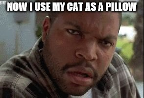 oh now I understand | NOW I USE MY CAT AS A PILLOW | image tagged in oh now i understand | made w/ Imgflip meme maker