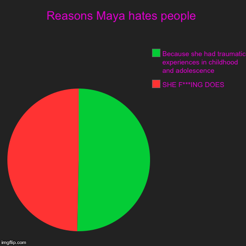 Reasons Maya hates people | SHE F***ING DOES, Because she had traumatic experiences in childhood and adolescence | image tagged in funny,pie charts | made w/ Imgflip chart maker