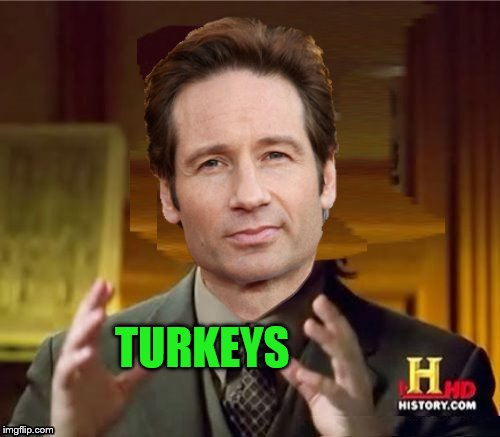 Fox Aliens | TURKEYS | image tagged in fox aliens | made w/ Imgflip meme maker