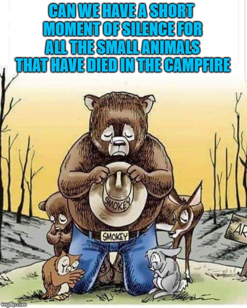Honor the humans that perished but don't forget the thousands of critters that didn't make it either... |  CAN WE HAVE A SHORT MOMENT OF SILENCE FOR ALL THE SMALL ANIMALS THAT HAVE DIED IN THE CAMPFIRE | image tagged in smokey the bear sad,memes,moment of silence,god's creatures,only you,forest fires | made w/ Imgflip meme maker