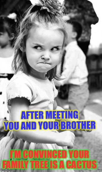 You're a pr... | AFTER MEETING YOU AND YOUR BROTHER I'M CONVINCED YOUR FAMILY TREE IS A CACTUS | image tagged in memes,angry toddler,prick,back handed,insult | made w/ Imgflip meme maker