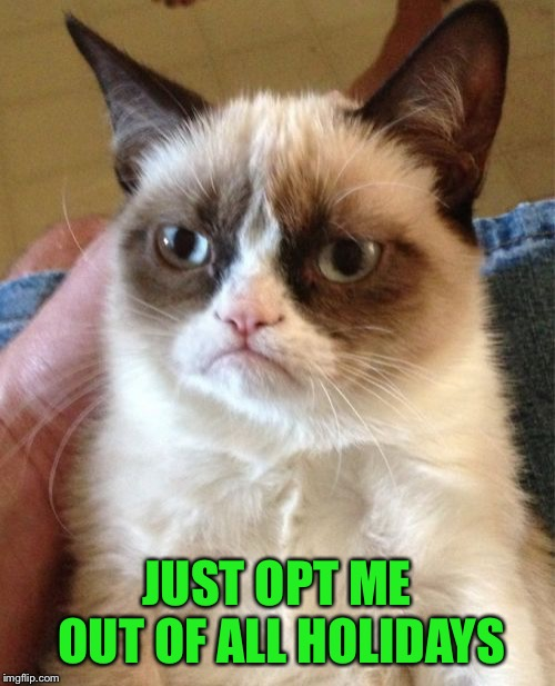 Grumpy Cat Meme | JUST OPT ME OUT OF ALL HOLIDAYS | image tagged in memes,grumpy cat | made w/ Imgflip meme maker
