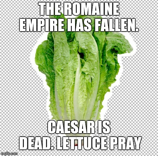 THE ROMAINE EMPIRE HAS FALLEN. CAESAR IS DEAD. LETTUCE PRAY | image tagged in romaine lettuce | made w/ Imgflip meme maker