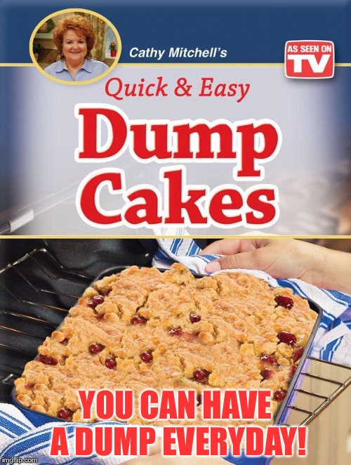 Dump Cake | YOU CAN HAVE A DUMP EVERYDAY! | image tagged in dump cake | made w/ Imgflip meme maker