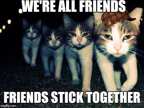 Wrong Neighboorhood Cats | WE'RE ALL FRIENDS FRIENDS STICK TOGETHER | image tagged in memes,wrong neighboorhood cats,scumbag | made w/ Imgflip meme maker