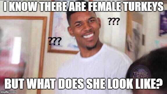 Black guy confused | I KNOW THERE ARE FEMALE TURKEYS BUT WHAT DOES SHE LOOK LIKE? | image tagged in black guy confused | made w/ Imgflip meme maker