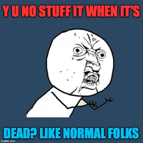 Y U No Meme | Y U NO STUFF IT WHEN IT'S DEAD? LIKE NORMAL FOLKS | image tagged in memes,y u no | made w/ Imgflip meme maker