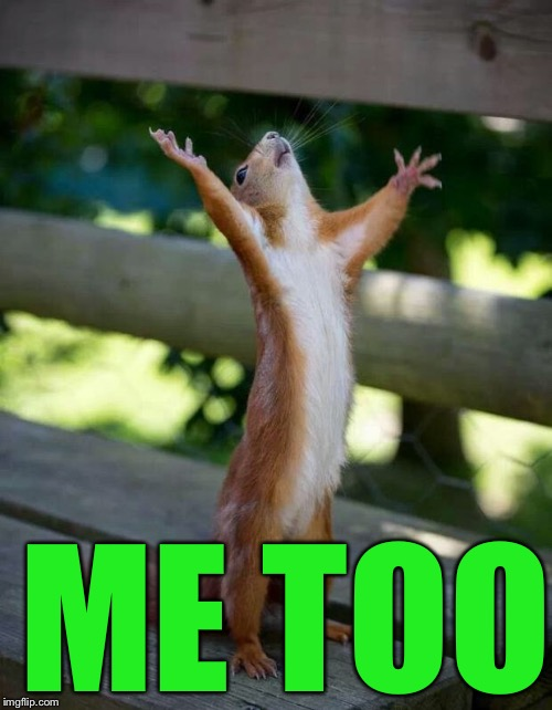 Happy Squirrel | ME TOO | image tagged in happy squirrel | made w/ Imgflip meme maker