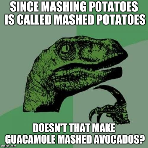 Philosoraptor Meme | SINCE MASHING POTATOES IS CALLED MASHED POTATOES DOESN'T THAT MAKE GUACAMOLE MASHED AVOCADOS? | image tagged in memes,philosoraptor | made w/ Imgflip meme maker
