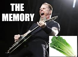 Metallica | THE MEMORY | image tagged in metallica | made w/ Imgflip meme maker