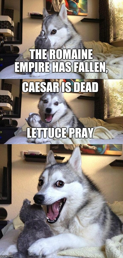 Bad Pun Dog Meme | THE ROMAINE EMPIRE HAS FALLEN, CAESAR IS DEAD LETTUCE PRAY | image tagged in memes,bad pun dog | made w/ Imgflip meme maker