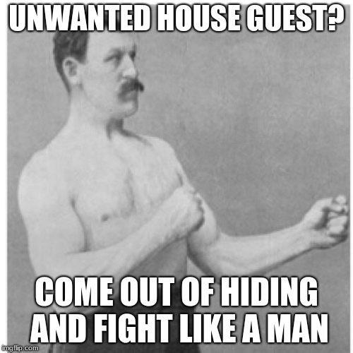 Overly Manly Man Meme | UNWANTED HOUSE GUEST? COME OUT OF HIDING AND FIGHT LIKE A MAN | image tagged in memes,overly manly man | made w/ Imgflip meme maker