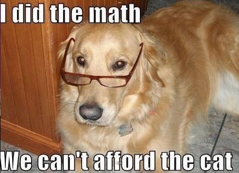 I DID THE MATH WE CAN'T AFFORD THE CAT | image tagged in memes,accountant dog | made w/ Imgflip meme maker