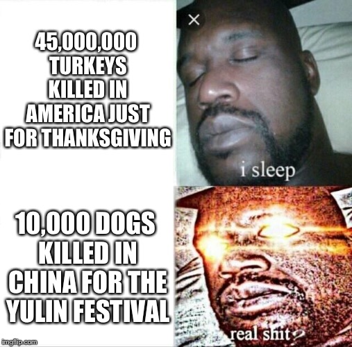 How in the what...? | 45,000,000 TURKEYS KILLED IN AMERICA JUST FOR THANKSGIVING 10,000 DOGS KILLED IN CHINA FOR THE YULIN FESTIVAL | image tagged in memes,sleeping shaq,thanksgiving,turkeys,dogs,china | made w/ Imgflip meme maker