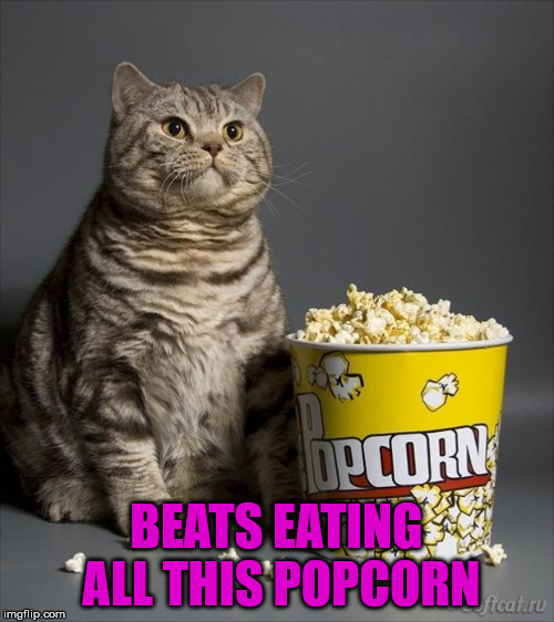 Cat eating popcorn | BEATS EATING ALL THIS POPCORN | image tagged in cat eating popcorn | made w/ Imgflip meme maker