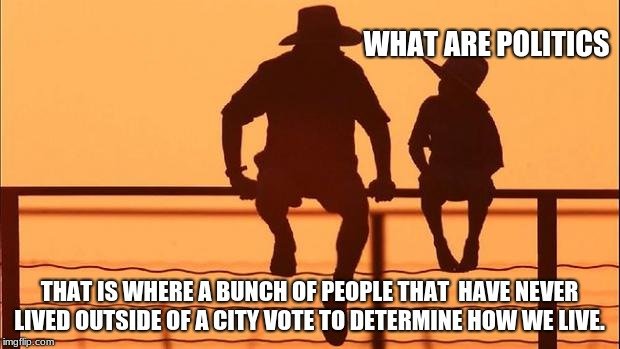 Cowboy wisdom, What are politics | WHAT ARE POLITICS THAT IS WHERE A BUNCH OF PEOPLE THAT  HAVE NEVER LIVED OUTSIDE OF A CITY VOTE TO DETERMINE HOW WE LIVE. | image tagged in cowboy father and son,cowboy wisdom,what are politics,country life,city life | made w/ Imgflip meme maker