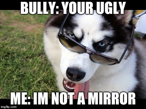 funny roast | BULLY: YOUR UGLY ME: I'M NOT A MIRROR | image tagged in bully,roasted,husky,funny meme | made w/ Imgflip meme maker