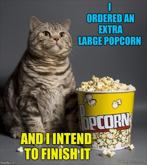 Cat eating popcorn | I ORDERED AN EXTRA LARGE POPCORN AND I INTEND TO FINISH IT | image tagged in cat eating popcorn | made w/ Imgflip meme maker