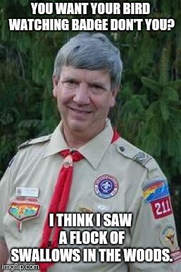 Harmless Scout Leader |  YOU WANT YOUR BIRD WATCHING BADGE DON'T YOU? I THINK I SAW A FLOCK OF SWALLOWS IN THE WOODS. | image tagged in memes,harmless scout leader | made w/ Imgflip meme maker